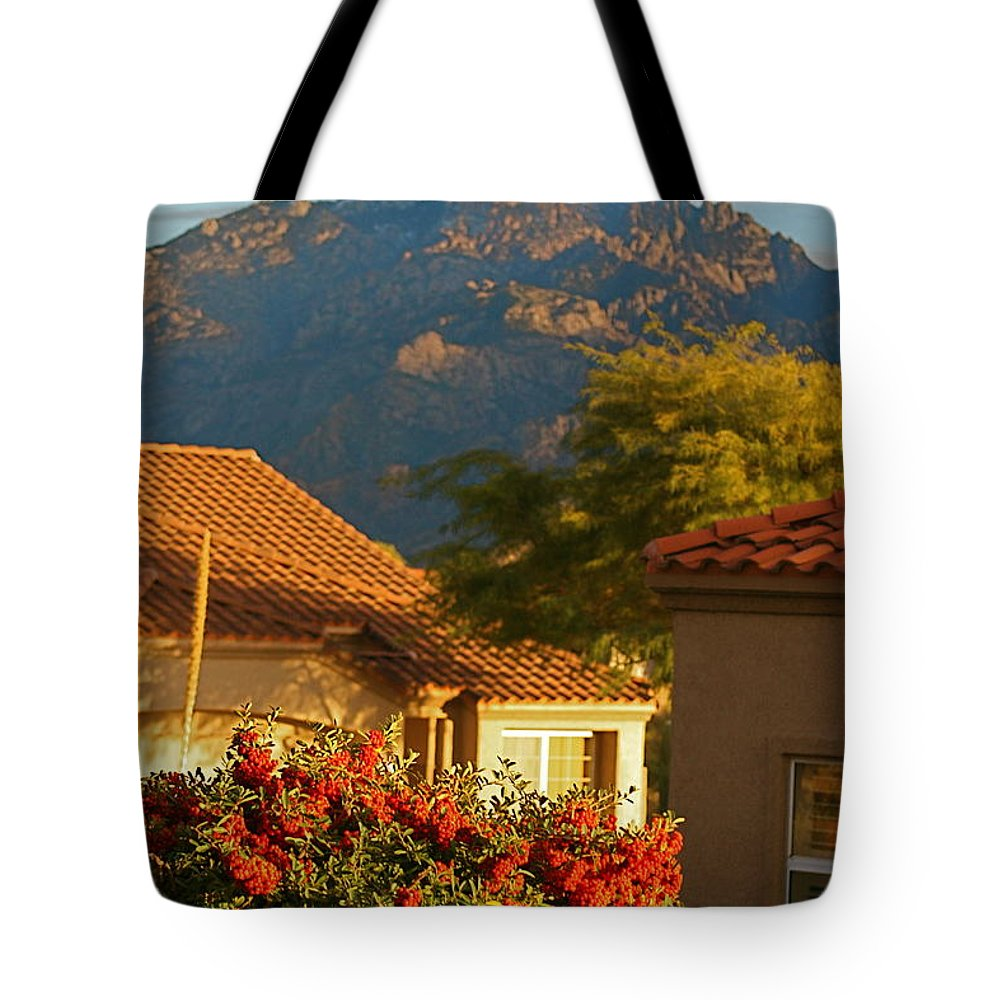 Mountains Tote Bag featuring the photograph Tucson Beauty by Nadine Rippelmeyer