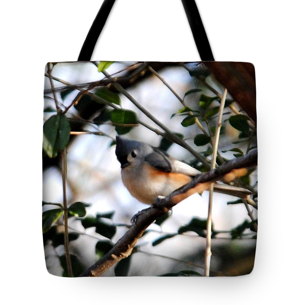 Tufted Titmouse Tote Bag featuring the photograph Tufted Titmouse by Jai Johnson