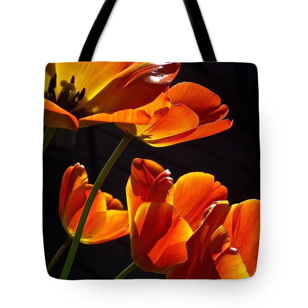 Flowers Tote Bag featuring the photograph Tulip 38 by Pamela Cooper