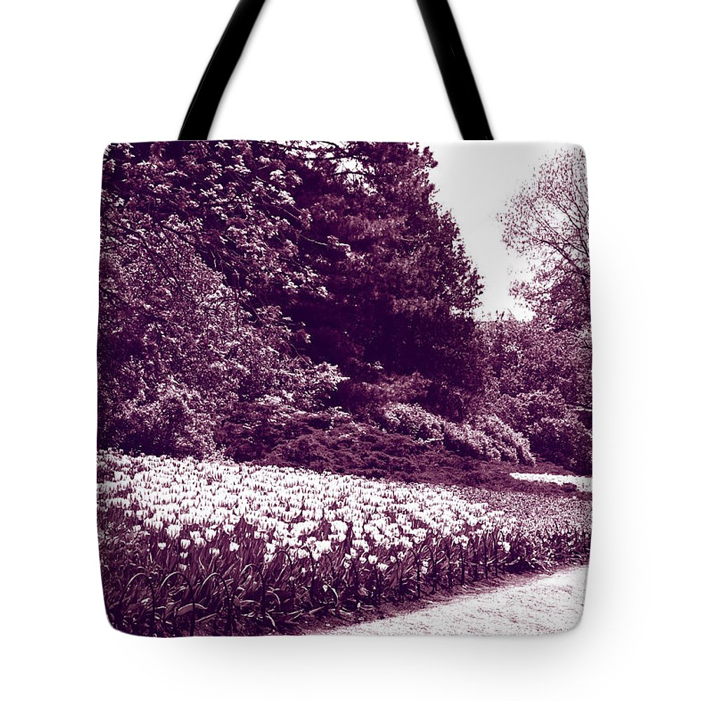 Tulips Tote Bag featuring the photograph Tulip Beds by Deborah Jackson