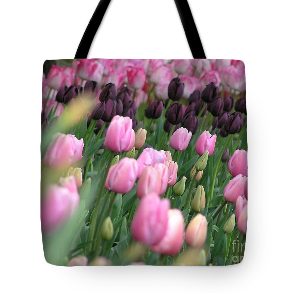 Tulips Tote Bag featuring the photograph Tulip Dreams by Louise Magno