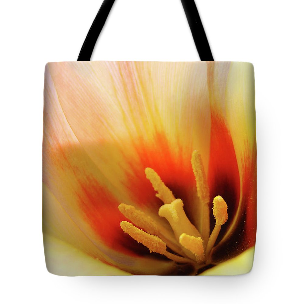 �tulips Artwork� Tote Bag featuring the photograph Tulip Flower Artwork 31 Tulips Flowers Macro Spring Floral Art Prints by Baslee Troutman