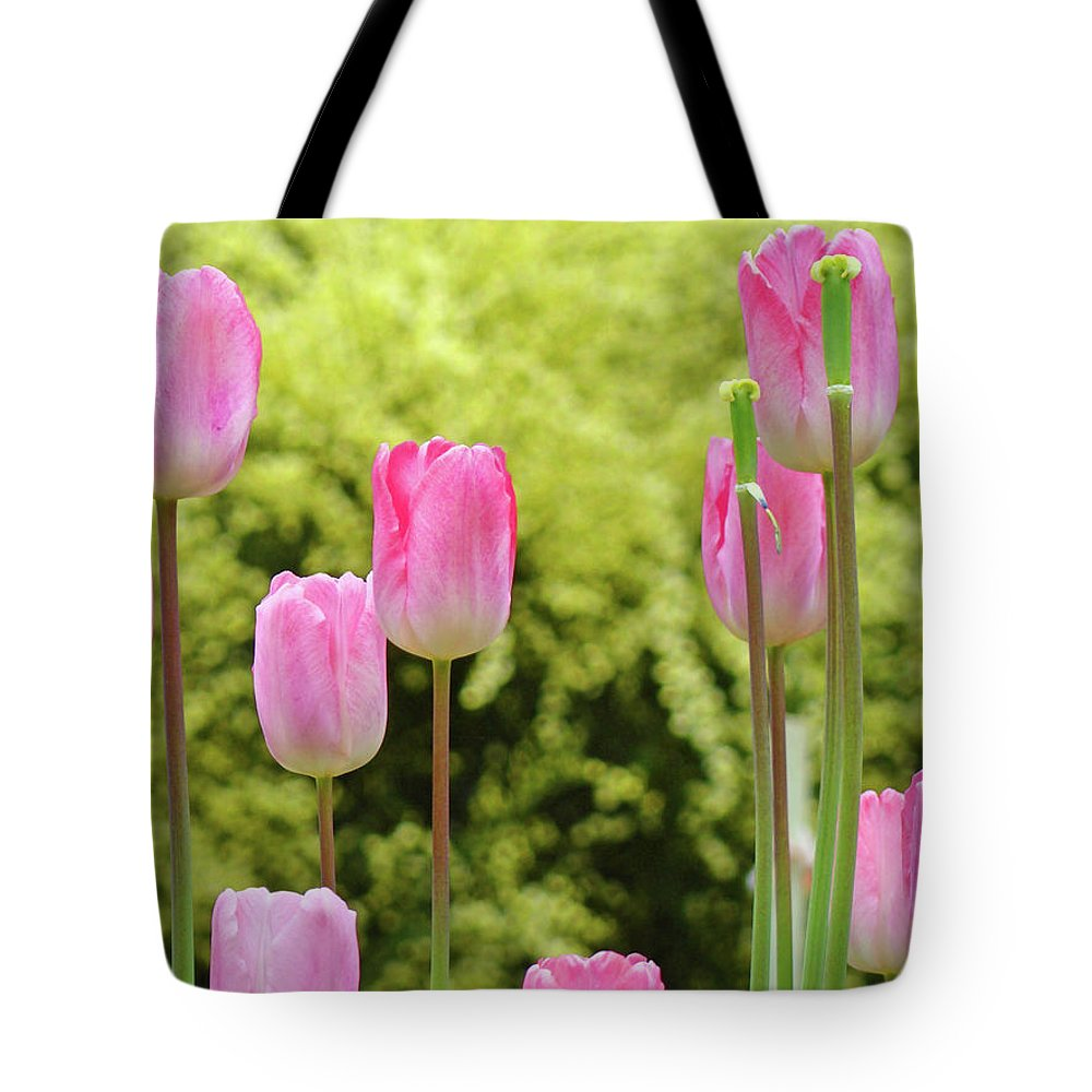 Tulip Tote Bag featuring the photograph Tulip Garden Landscape Art Prints Pink Tulips Floral Baslee Troutman by Baslee Troutman
