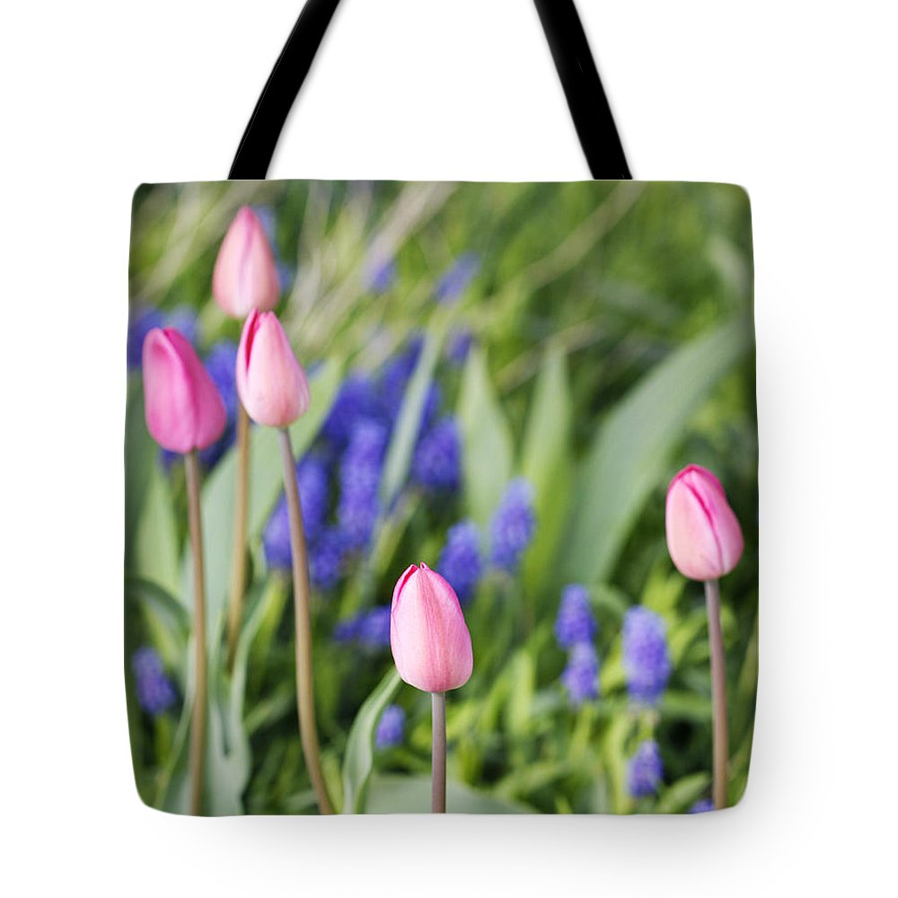 Flower Tote Bag featuring the photograph Tulip Garden by Marilyn Hunt