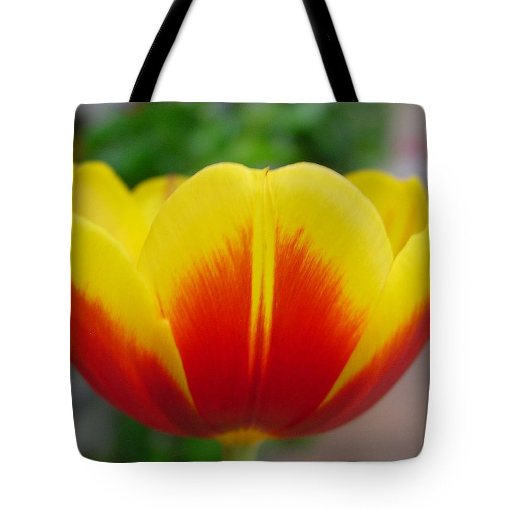 Tulip. Flower Tote Bag featuring the photograph Tulip by Kathy Bucari