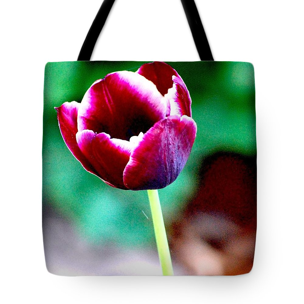 Digital Photo Tote Bag featuring the photograph Tulip Me by David Lane