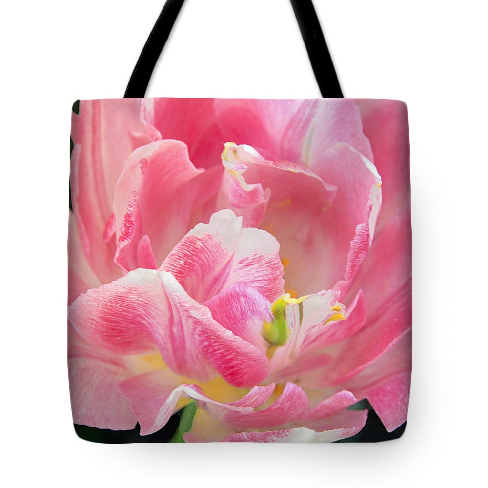 Tulip Portrait In Pink Tote Bag featuring the photograph Tulip Peppermint Pink by Regina Geoghan