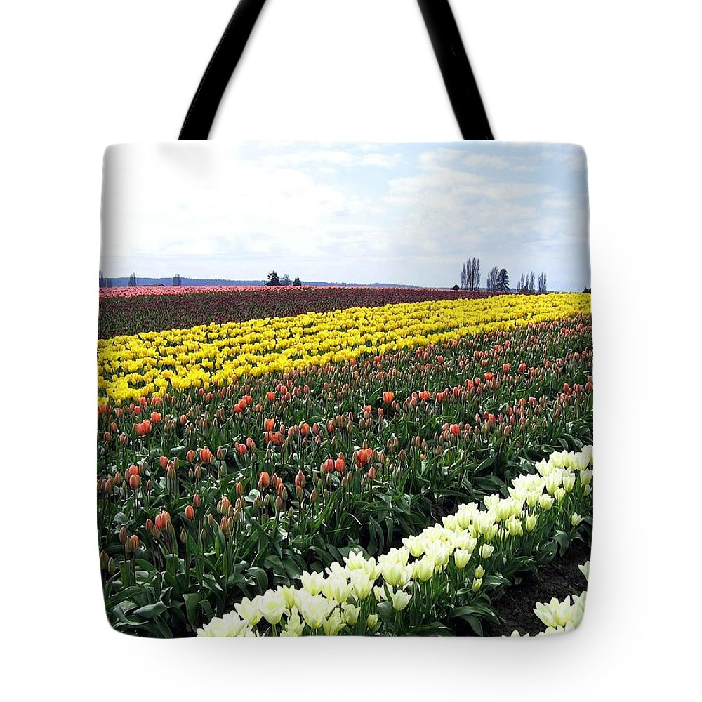 Agriculture Tote Bag featuring the photograph Tulip Town 11 by Will Borden