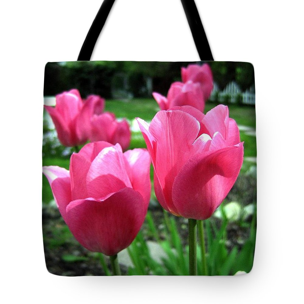 Tulips Tote Bag featuring the photograph Tulipfest 3 by Will Borden