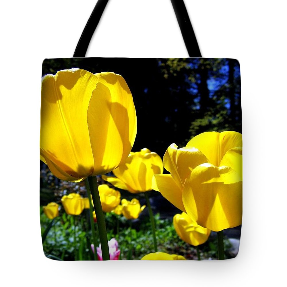 Tulips Tote Bag featuring the photograph Tulipfest 5 by Will Borden