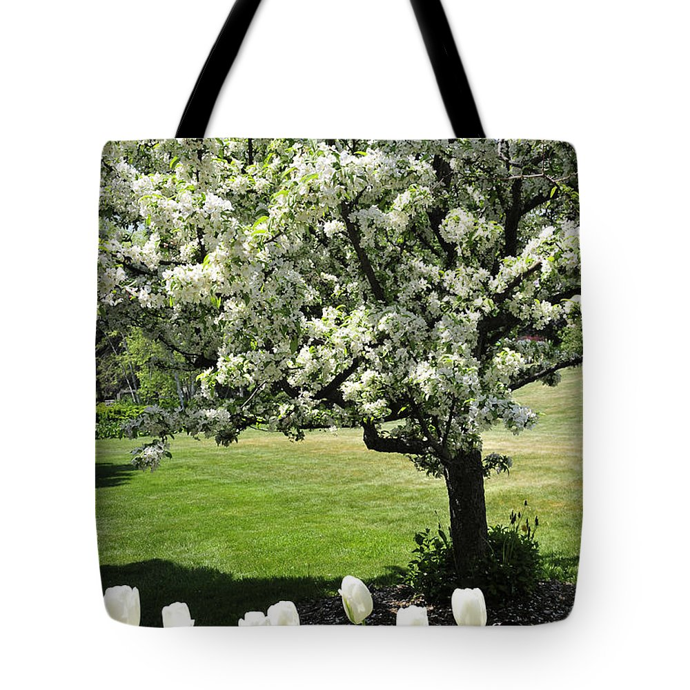 Flowering Tree Tote Bag featuring the photograph Tulips And Tees by David Arment