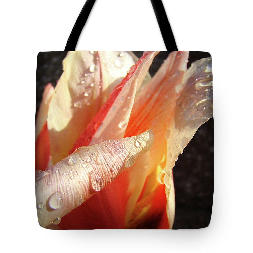 �tulips Artwork� Tote Bag featuring the photograph Tulips Artwork Flowers Floral Art Prints Spring Peach Tulip Flower Macro by Baslee Troutman