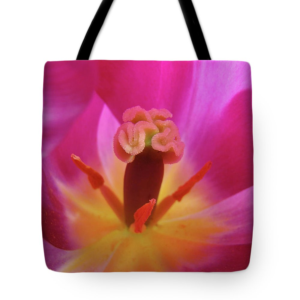 �tulips Artwork� Tote Bag featuring the photograph Tulips Artwork Pink Purple Tuli Flower Art Prints Spring Garden Nature by Baslee Troutman
