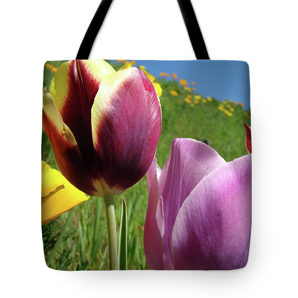 �tulips Artwork� Tote Bag featuring the photograph Tulips Artwork Tulip Flowers Spring Meadow Nature Art Prints by Baslee Troutman