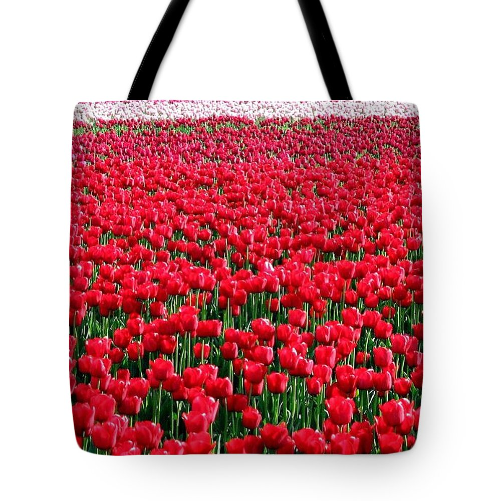 Tulips Tote Bag featuring the photograph Tulips By The Million by Will Borden