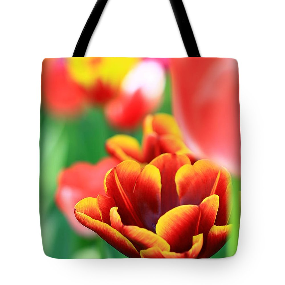 Tulips Tote Bag featuring the photograph Tulips by Julian Regan
