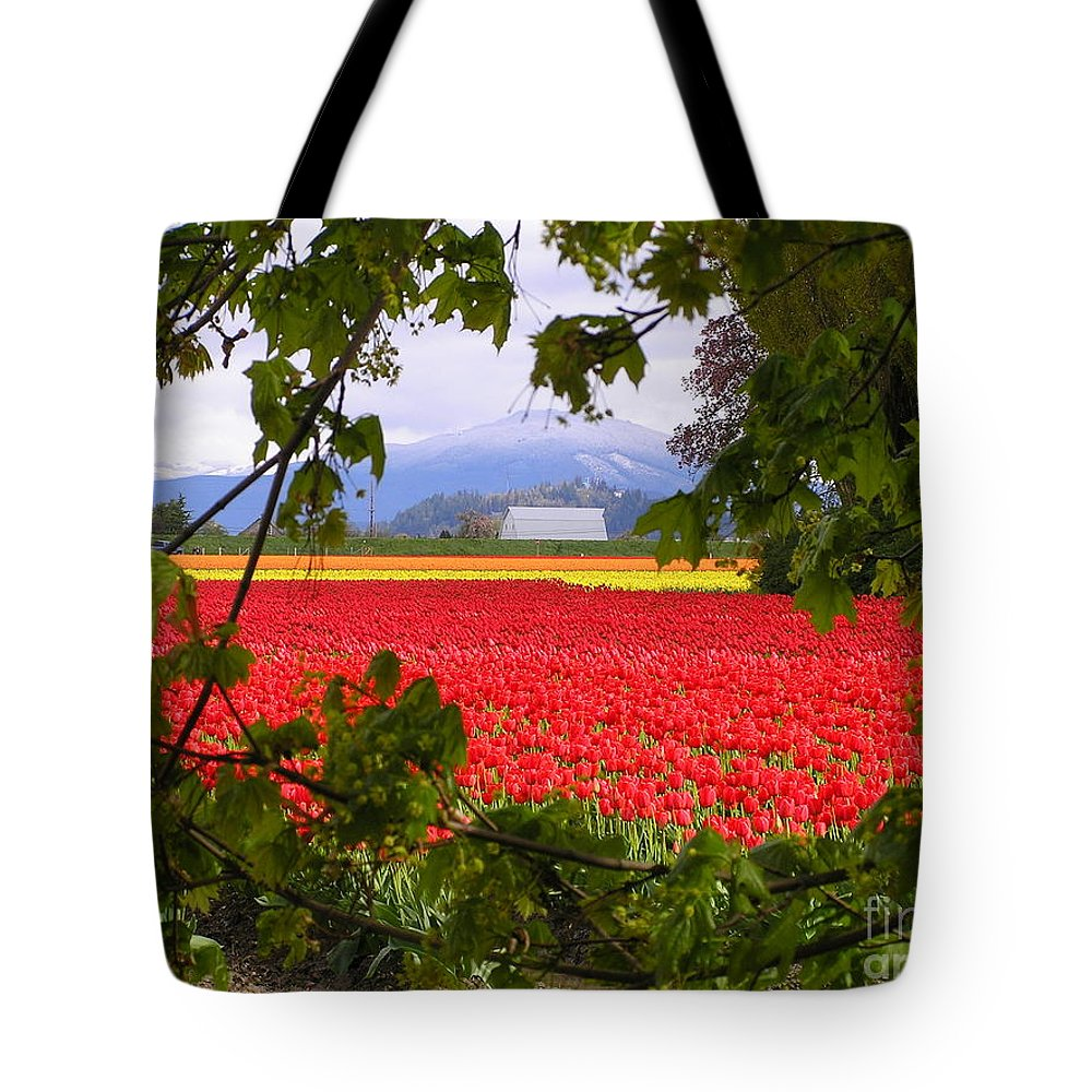 Tulip Tote Bag featuring the photograph Tulips Secret Window by Louise Magno