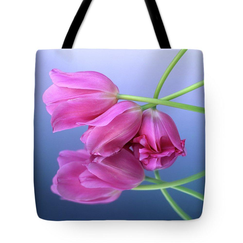 Variety Tote Bag featuring the photograph Tulips .tulipa. by Bernard Jaubert