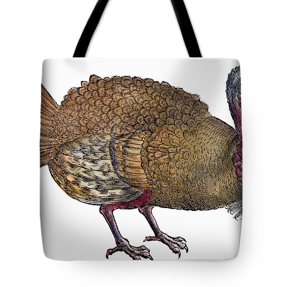 1560 Tote Bag featuring the photograph Turkey, 1560 by Granger