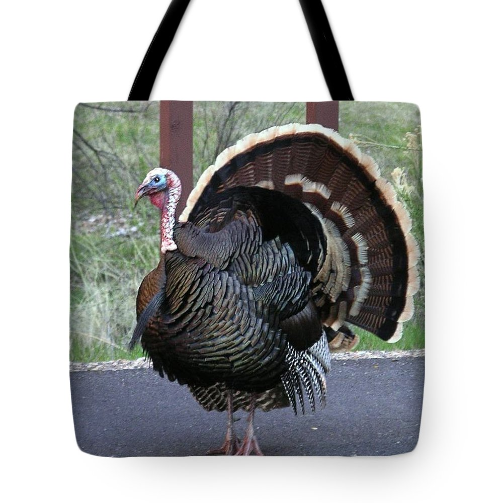 Bird Tote Bag featuring the photograph Turkey by Rich Bodane
