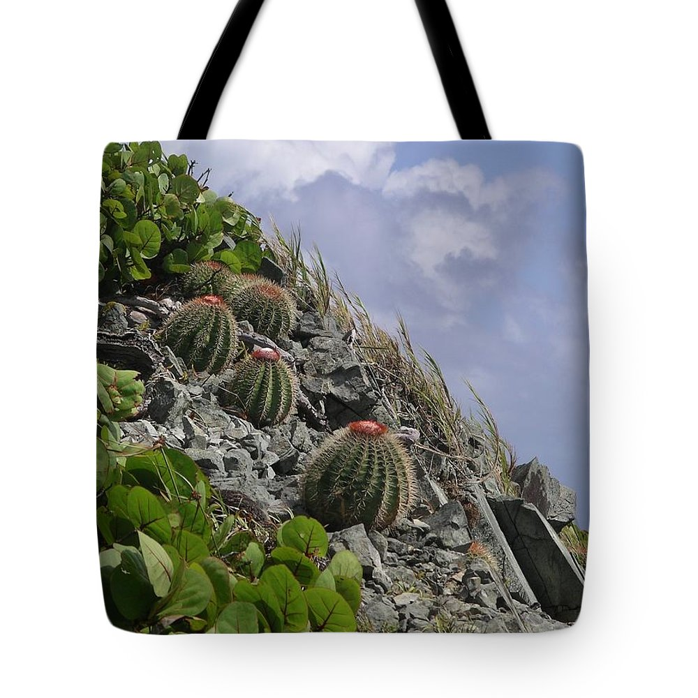 Cactus Tote Bag featuring the photograph Turks Cap Cactus by Rich Bodane