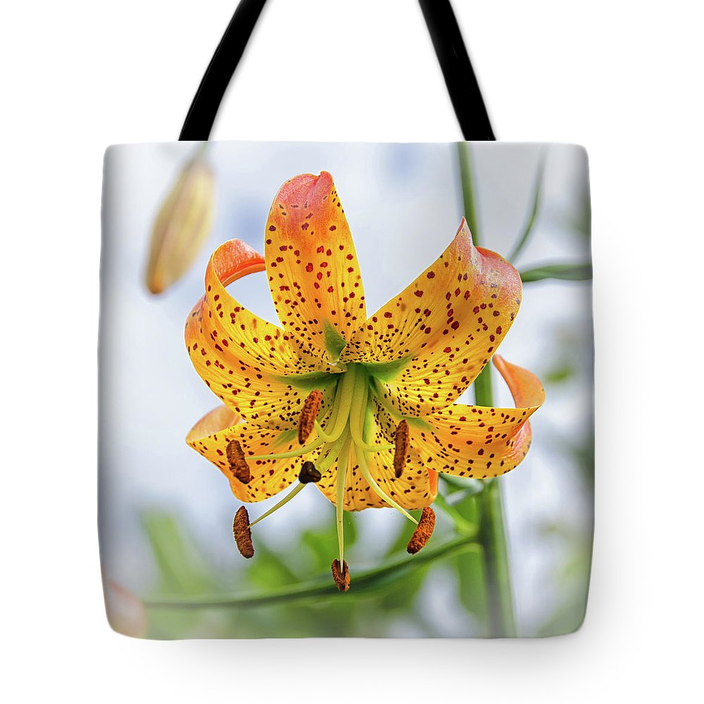 Blue Ridge Mountains Tote Bag featuring the photograph Turk's Cap Lily by Kristina Plaas
