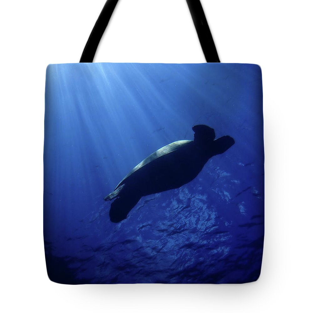 Maui Tote Bag featuring the photograph Turtle Beams by Erin Donalson