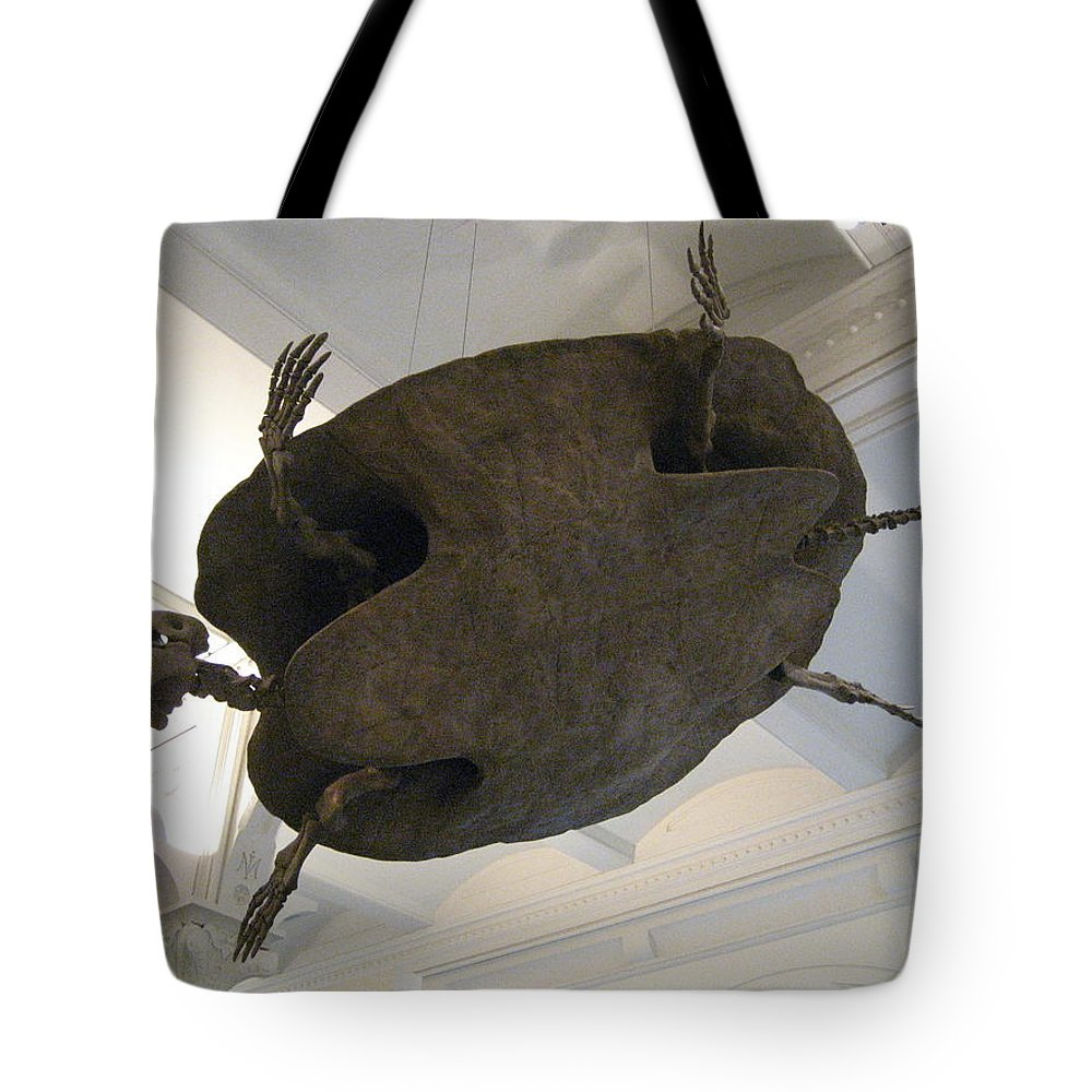 Turtle Tote Bag featuring the photograph Turtle by Brian McDunn