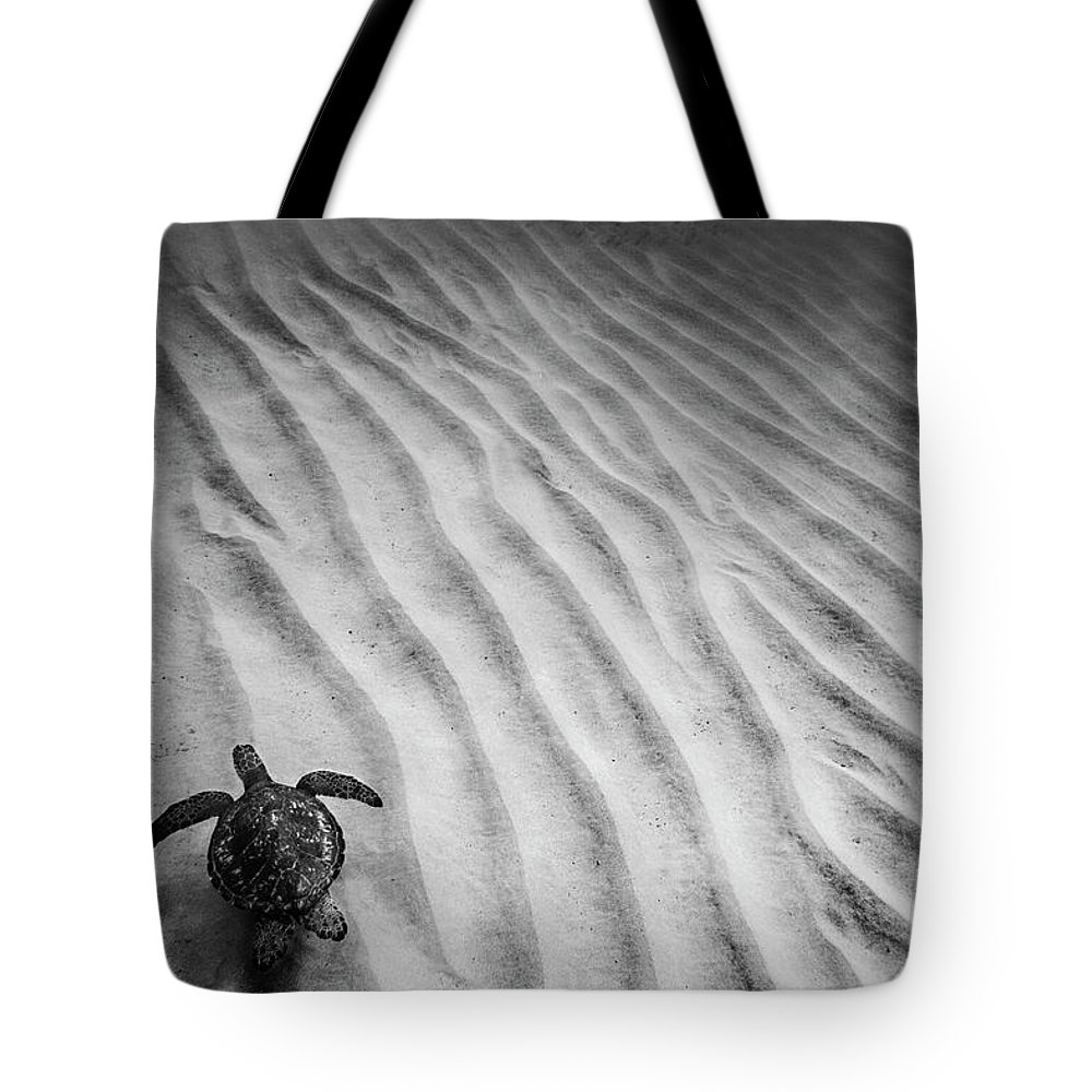 Black And White Photography Tote Bag featuring the photograph Turtle Ridge by Sean Davey