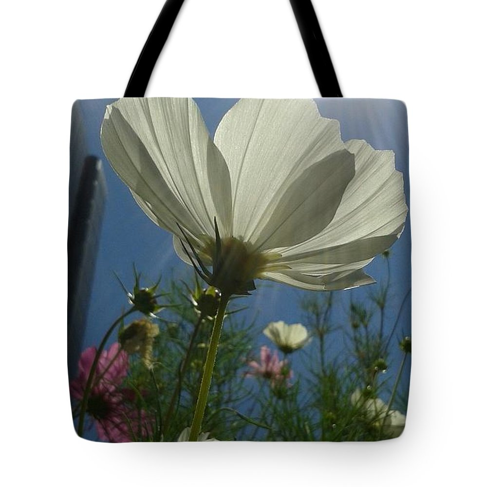 Sun Tote Bag featuring the photograph Twice The Sun by Clifford Purify