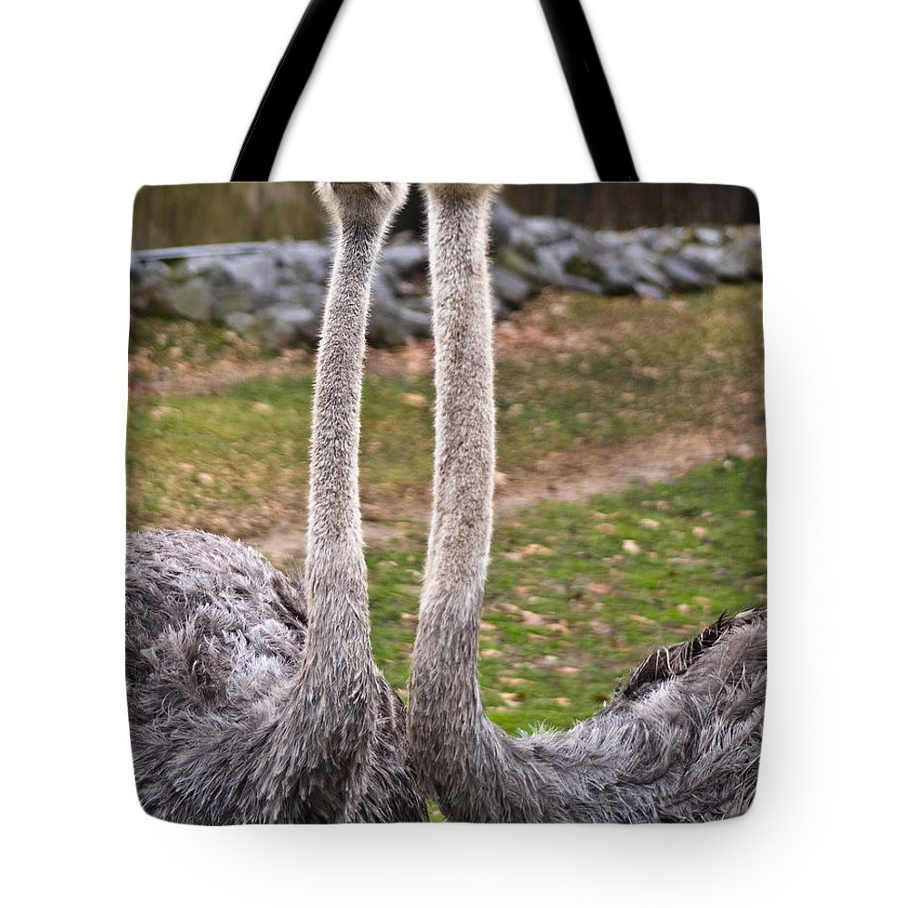 Ostrige Tote Bag featuring the photograph Twins by Douglas Barnett