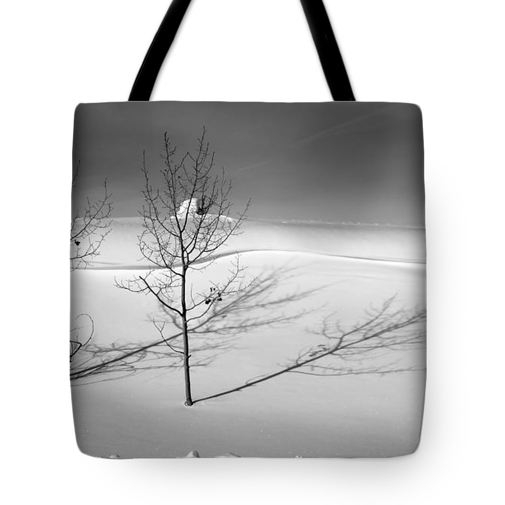 Nature Tote Bag featuring the photograph Twins by Skip Hunt