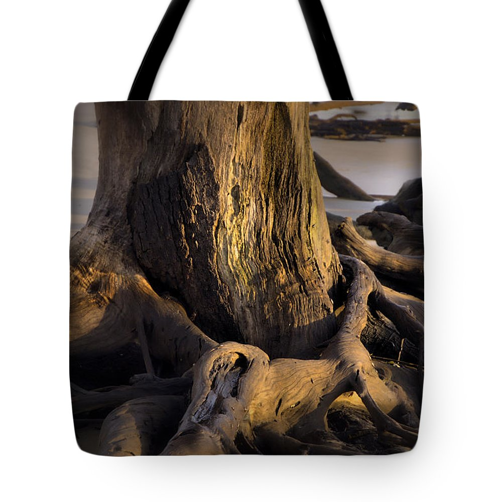 Nature Tote Bag featuring the photograph Twisted Revealed by Laura Ragland