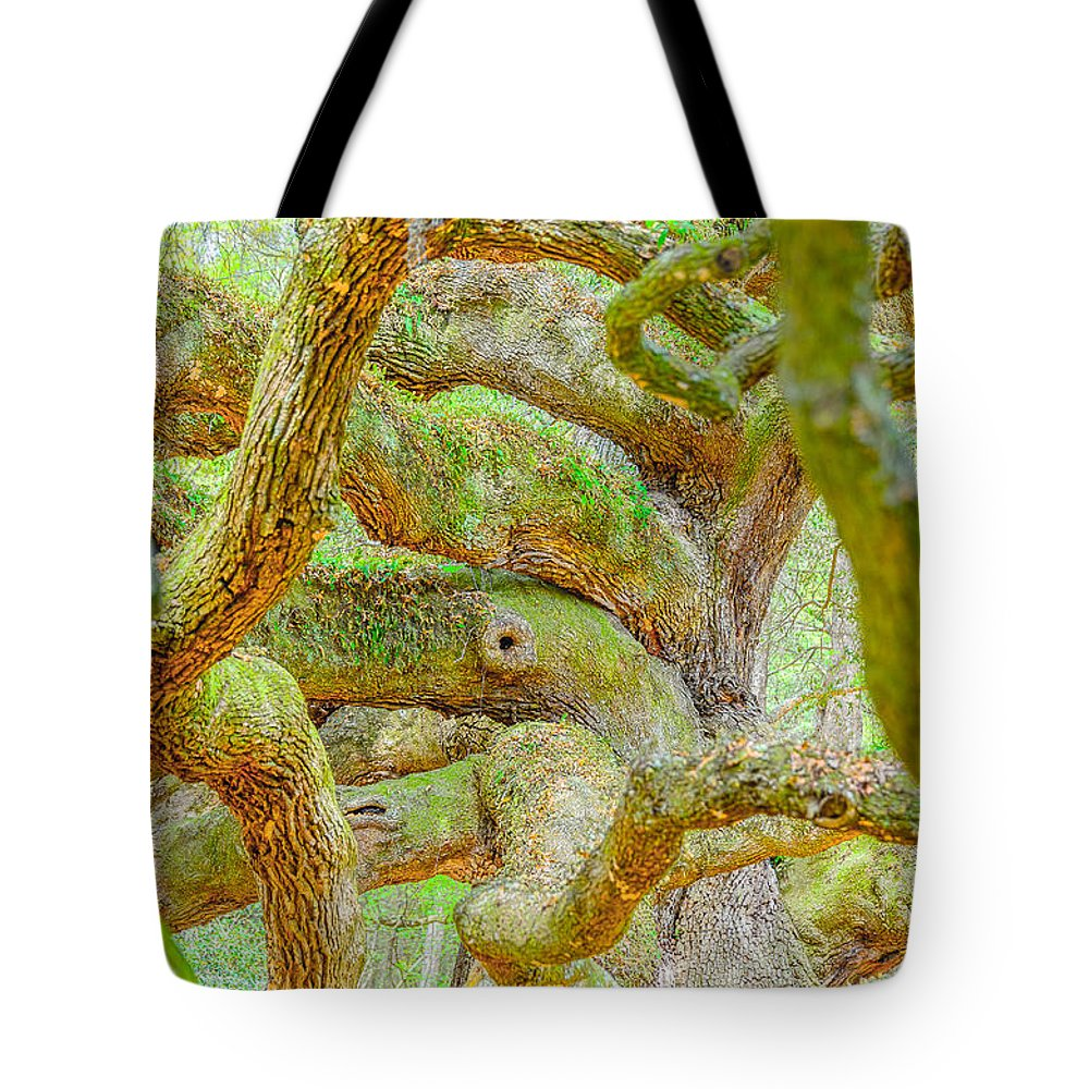 South Carolina Tote Bag featuring the photograph Twists In Time by Elvis Vaughn