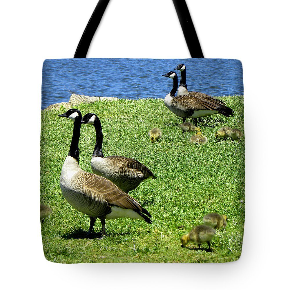Geese Tote Bag featuring the photograph Two By Two by Sandi OReilly