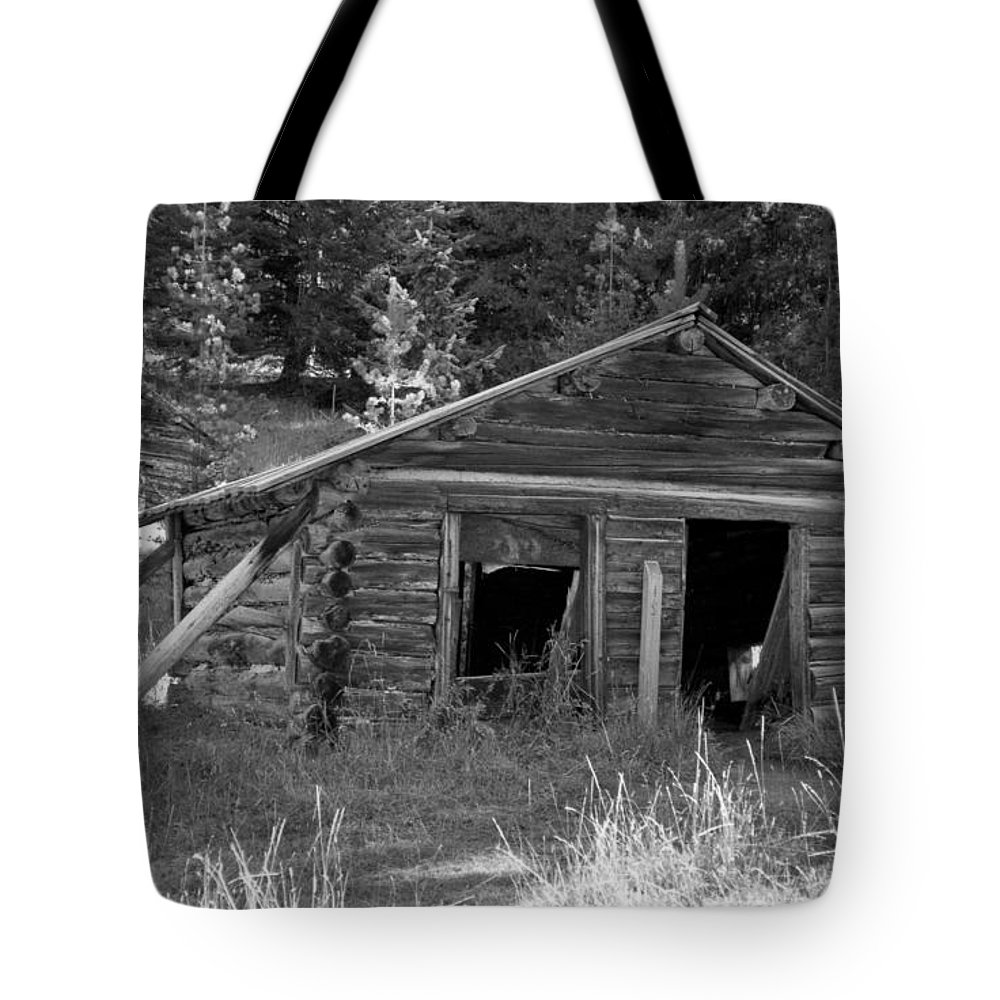 Abandoned Tote Bag featuring the photograph Two Cabins One Outhouse by Richard Rizzo