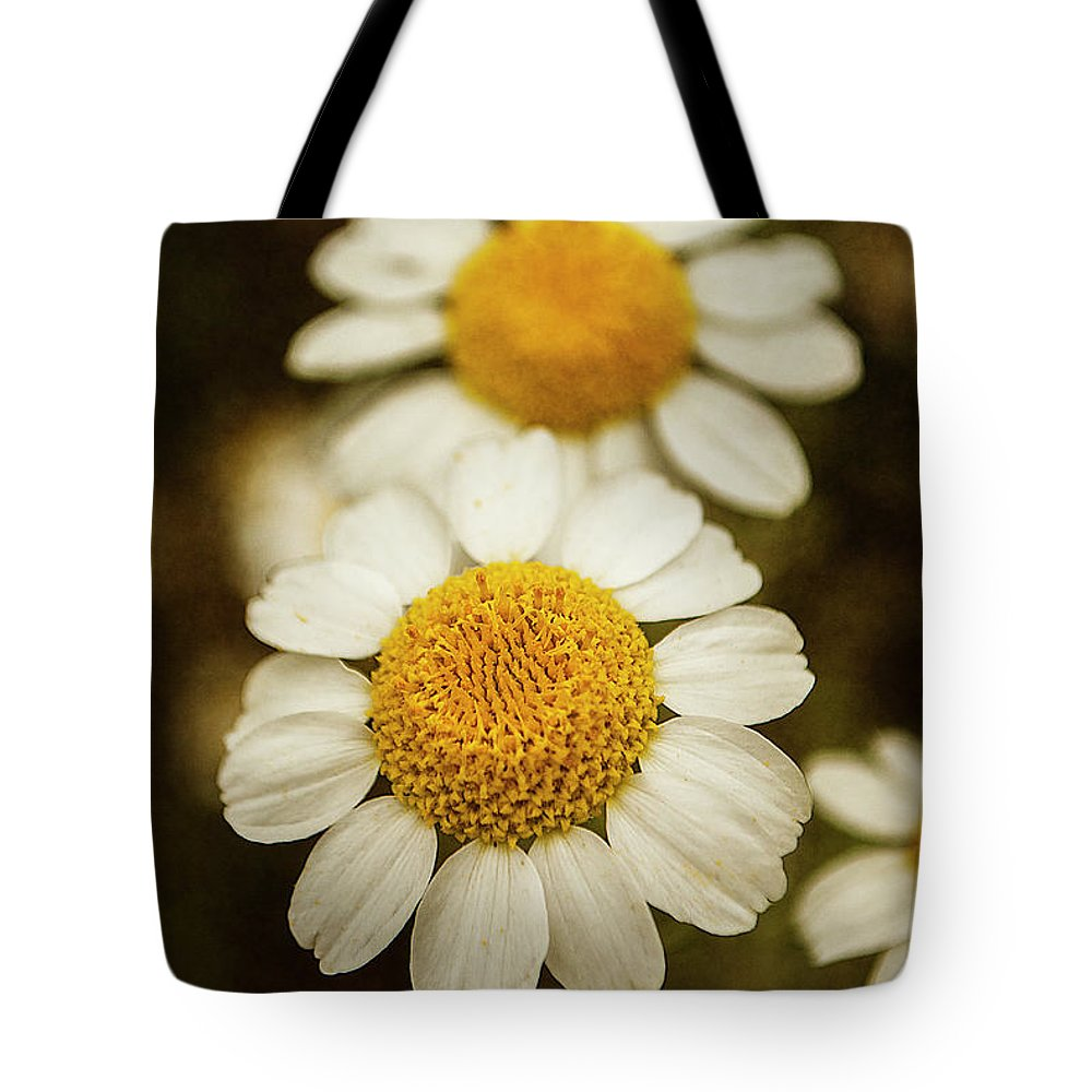 Photography Tote Bag featuring the photograph Two Daisies by Ignacio Leal Orozco