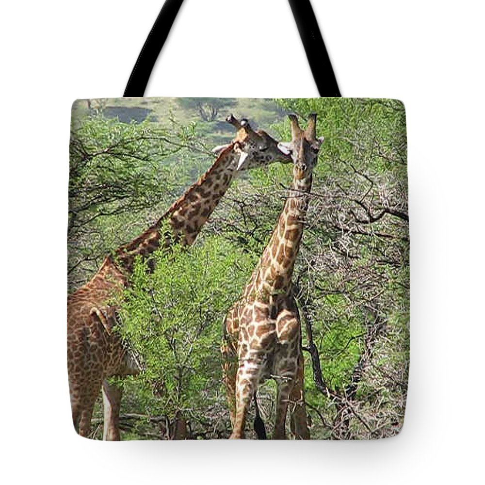 Giraffe Tote Bag featuring the photograph Two For One by Diane Barone