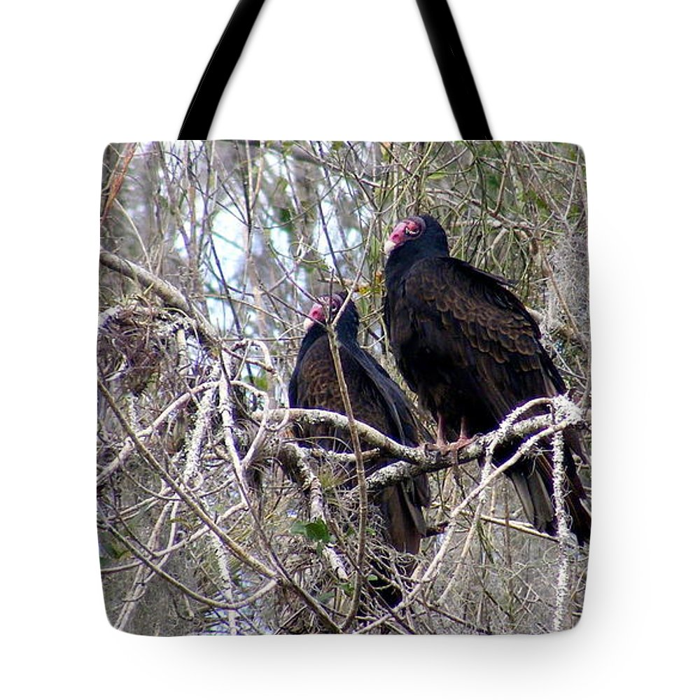 Birds Tote Bag featuring the photograph Two Friends by Ed Smith