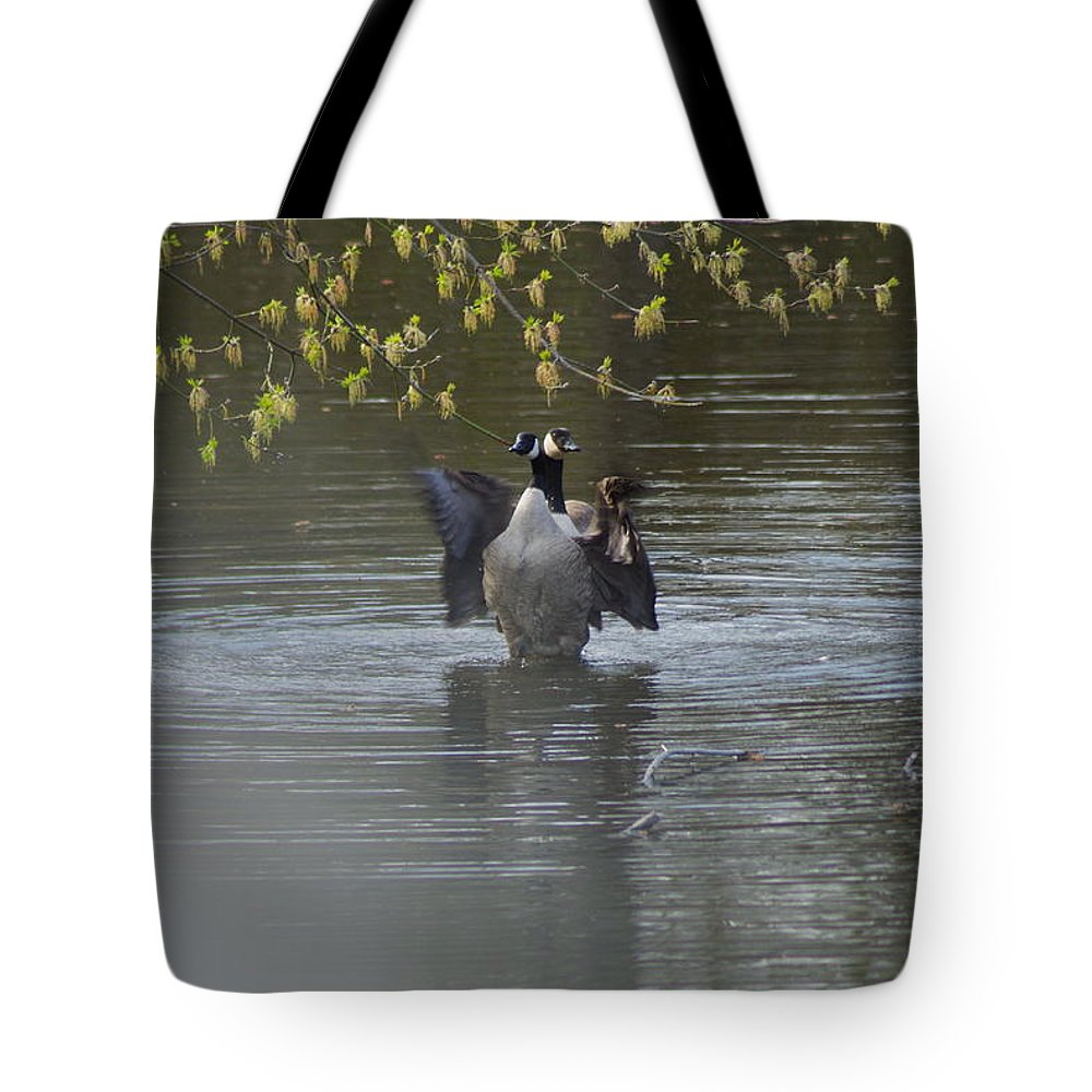 Geese Tote Bag featuring the photograph Two Geese On A Pond by Alice Markham