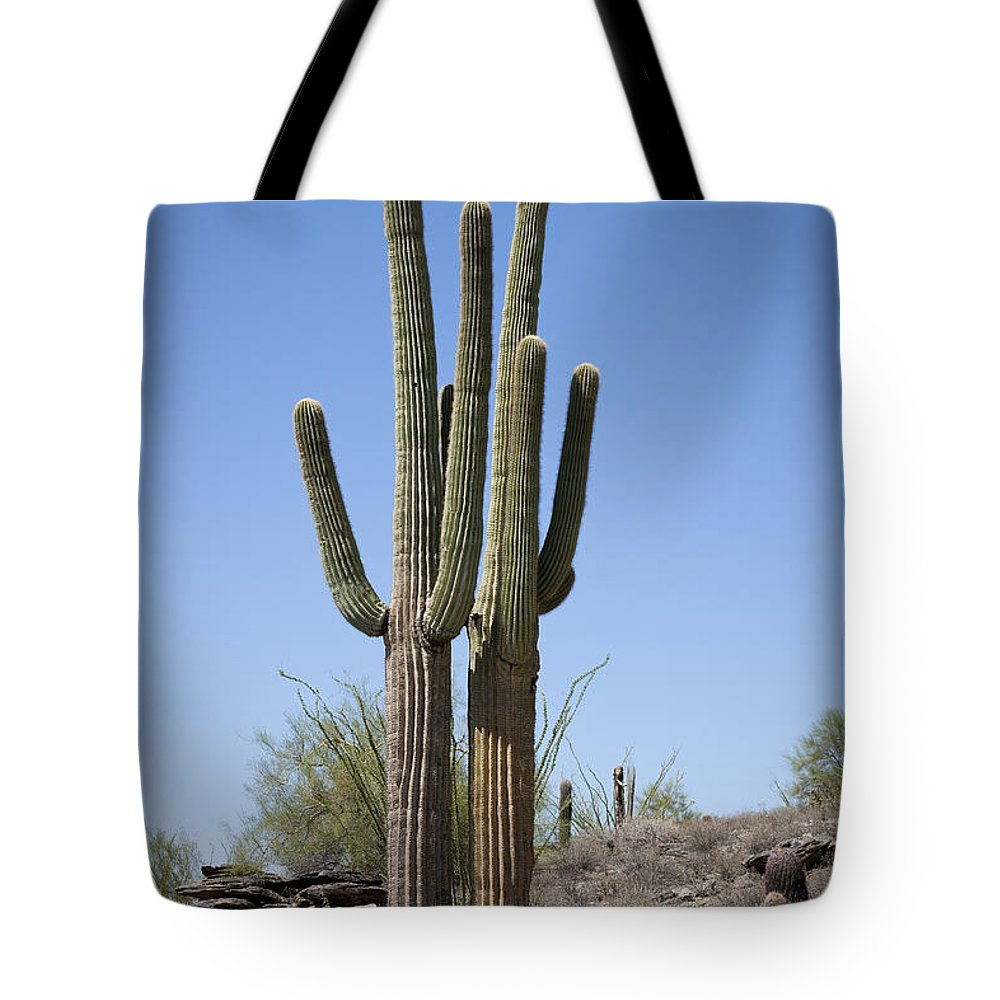 Saguaro Tote Bag featuring the photograph Two Giants by Kelley King