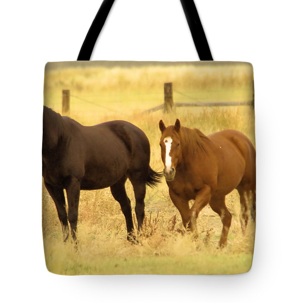 Horses Tote Bag featuring the photograph Two Horses In A Field by Jeff Swan