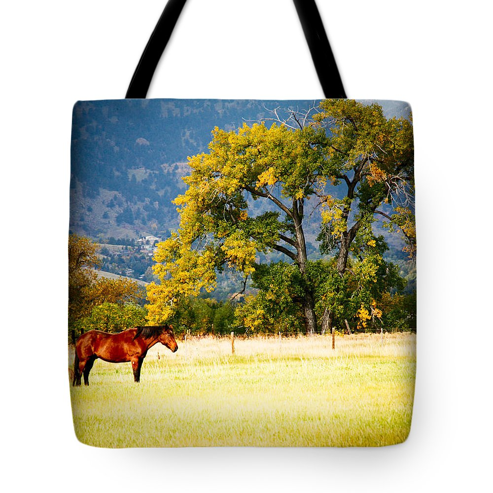 Animal Tote Bag featuring the photograph Two Horses by Marilyn Hunt