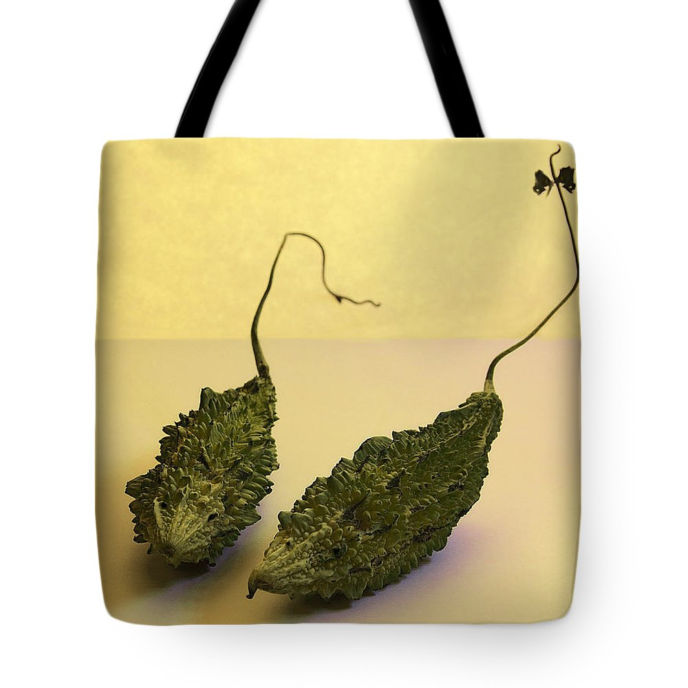 Two Little Mice Tote Bag featuring the photograph Two Little Mice by Viktor Savchenko