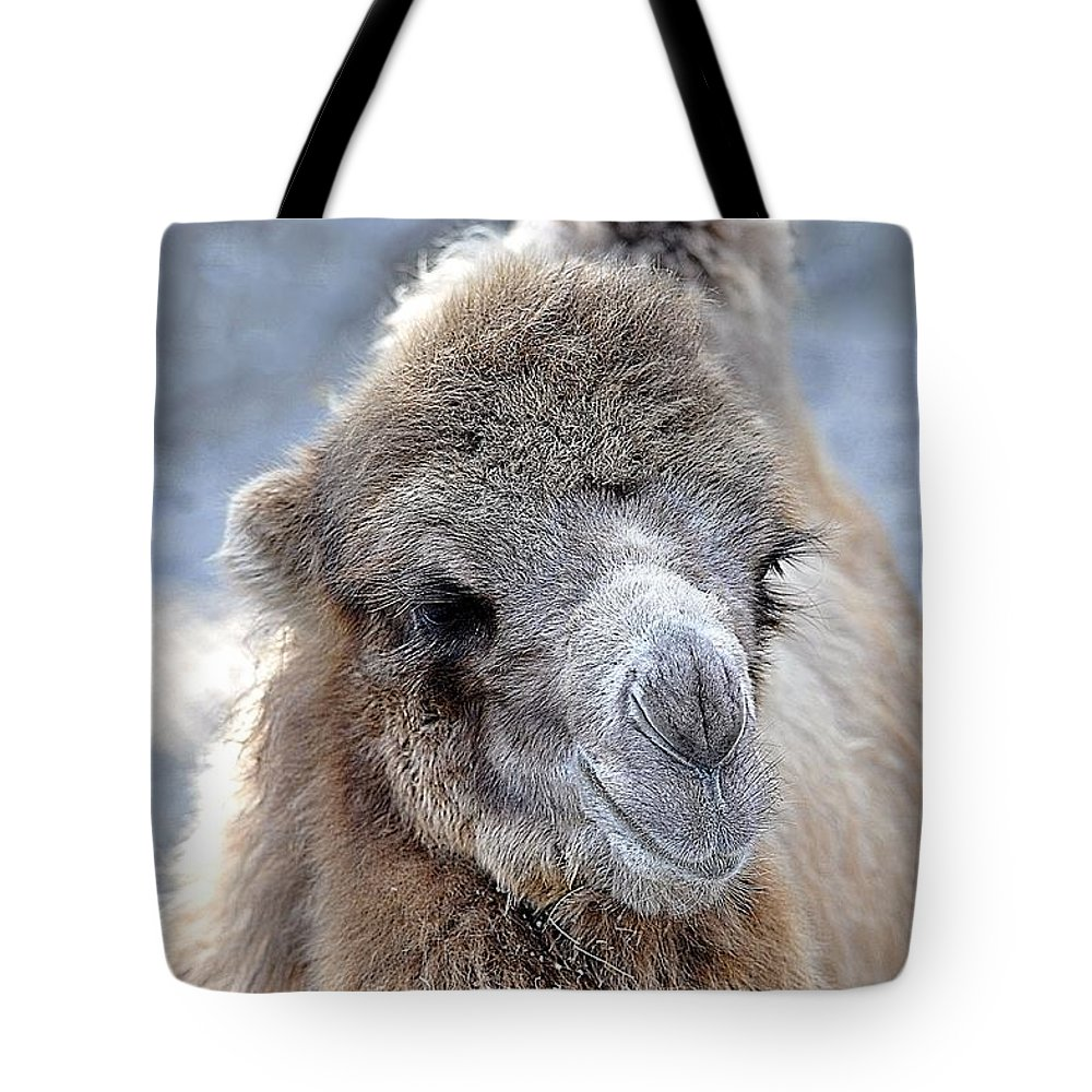 Animals Tote Bag featuring the photograph Two Lumps Please by Jan Amiss Photography