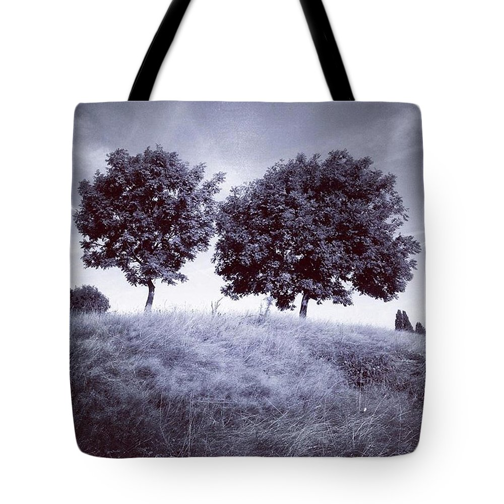 Snapseed Tote Bag featuring the photograph Two Rowans The Cloddies, Nuneaton by John Edwards