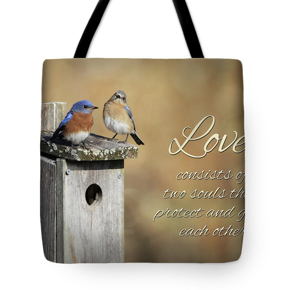Blue Tote Bag featuring the photograph Two Souls by Lori Deiter
