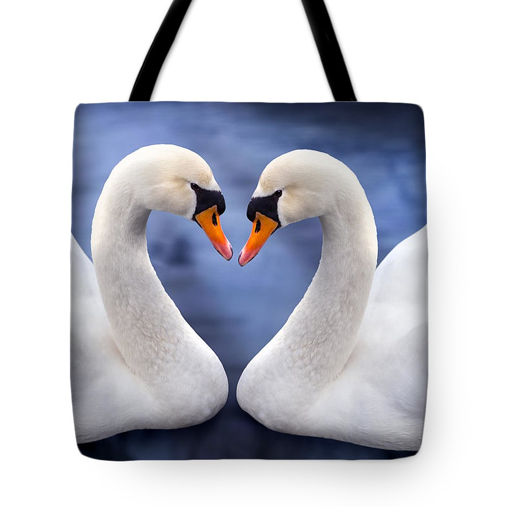 Valentines Tote Bag featuring the photograph Two Swans by MGL Meiklejohn Graphics Licensing
