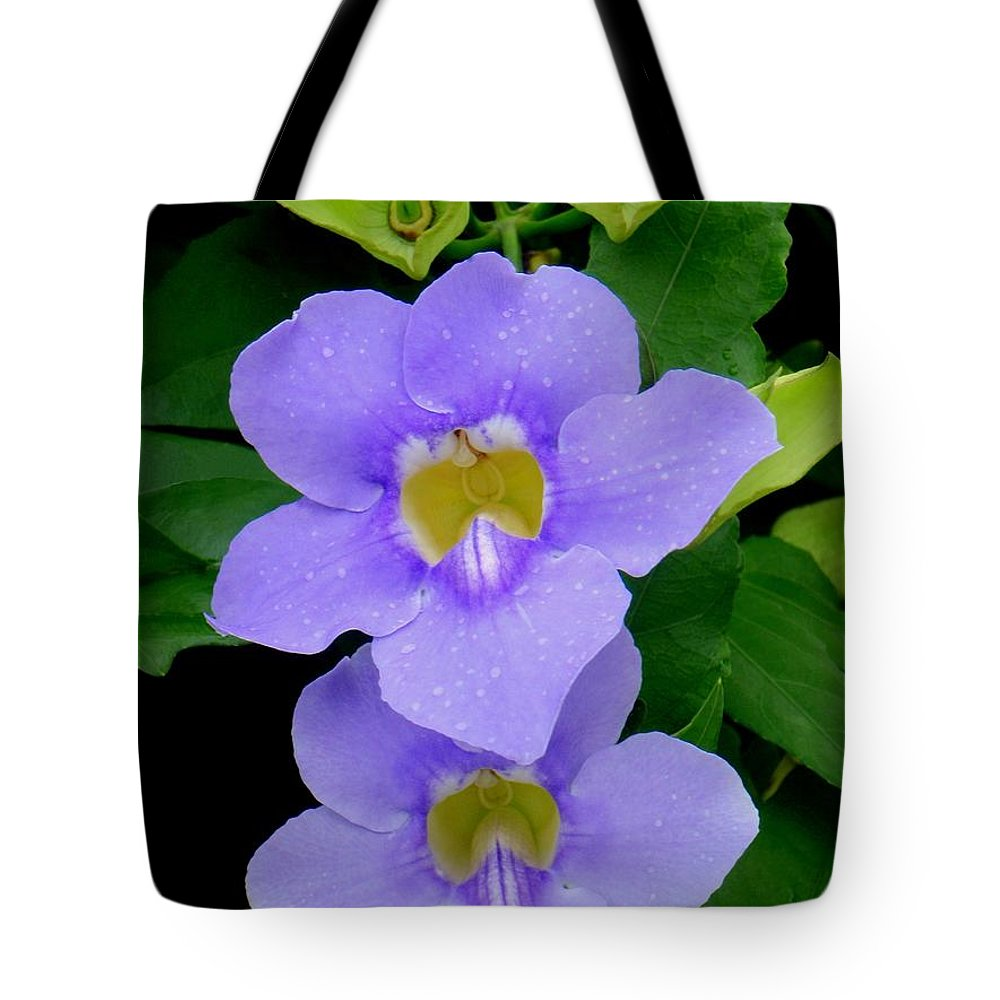 Thunbergia Tote Bag featuring the photograph Two Thunbergia With Dew Drops by Mary Deal