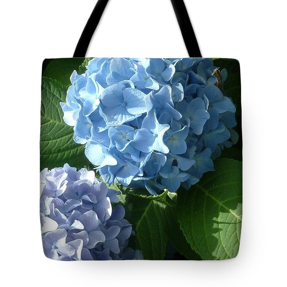 Hydrangea Tote Bag featuring the photograph Two-toned Hydrangeas by Joan Gal-Peck
